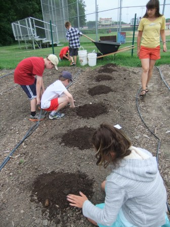 Planting melons