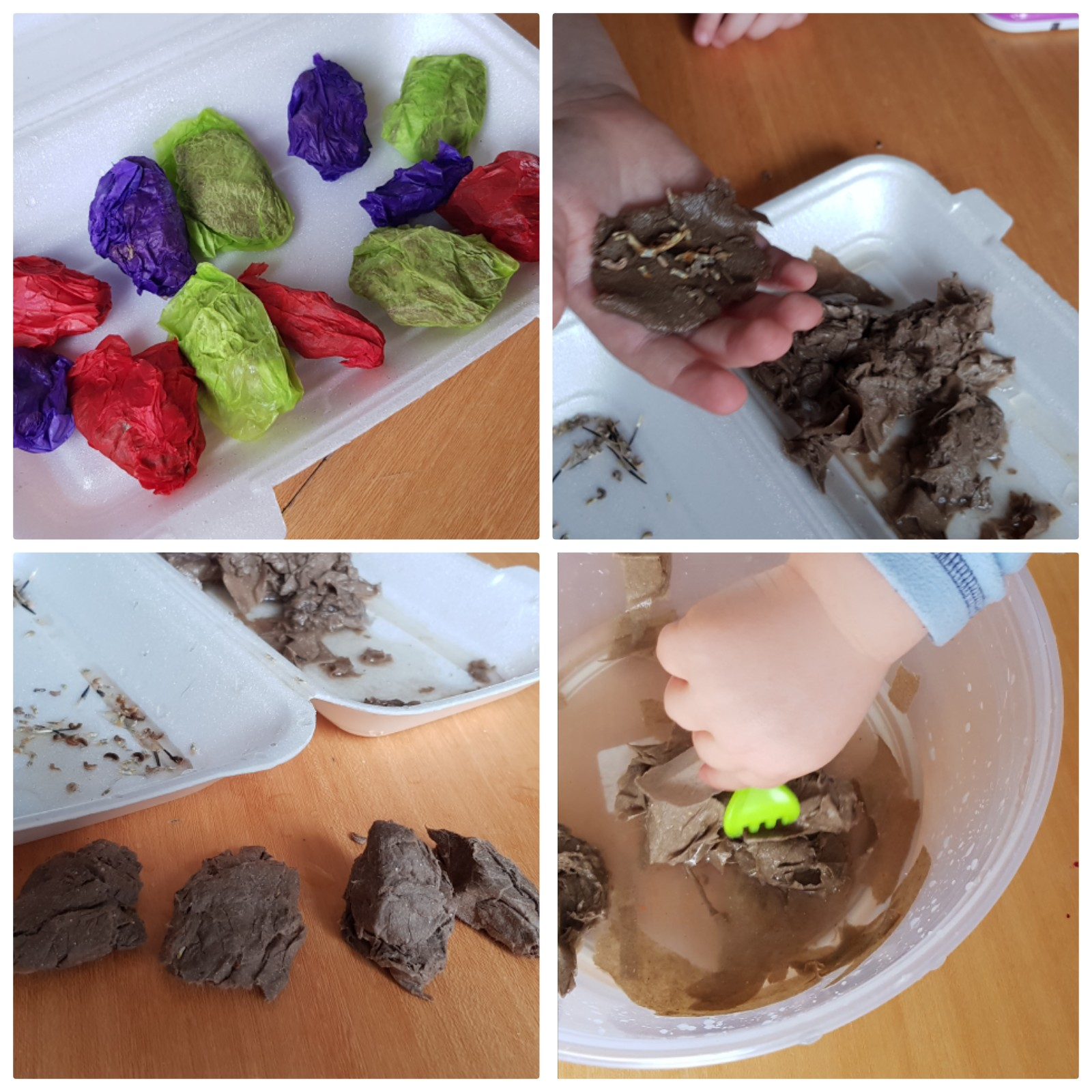 Seed bombs (When You Have NO Garden)