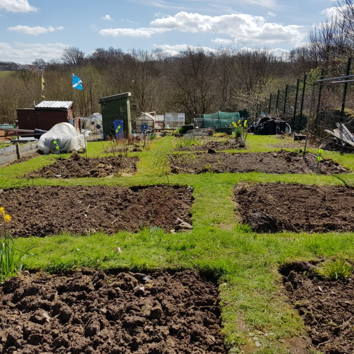 Winter Gardening is a fantastic activity to introduce to kids. So many vegetables and fruit you can grow in winter especially on a plot like this