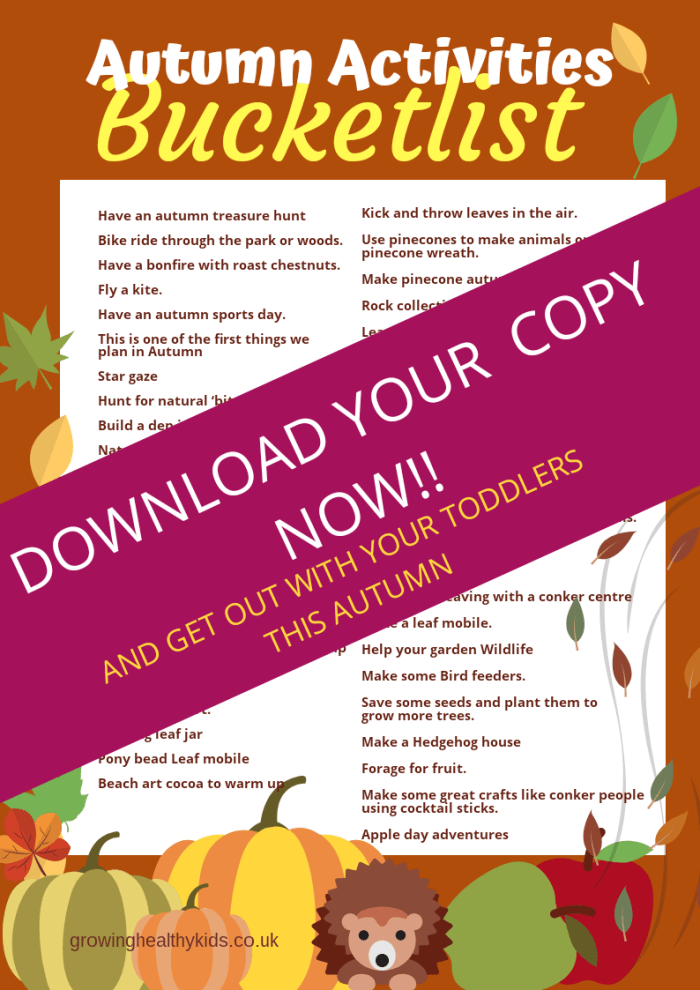 A great list of autumn activities to get the kids outdoors and having fun with nature this Autumn,