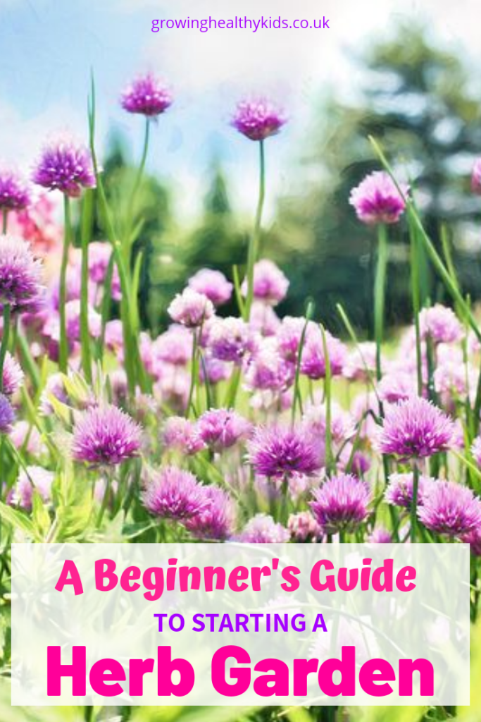 Starting a herb garden is one of the easiest ways to introduce yourself and your family into gardening and growing your own food.