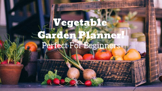 diy vegetable garden planner for beginners
