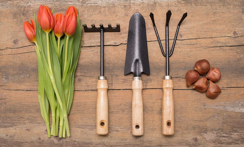 growing vegetables needs tools