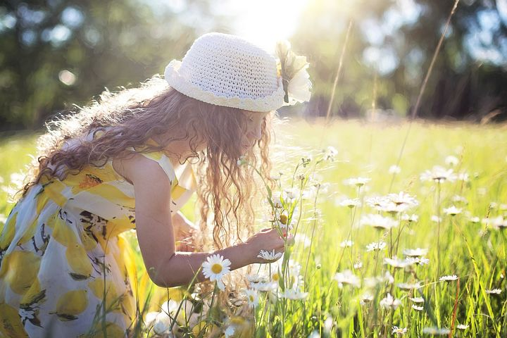 A girl picking wildflowers in a meadow