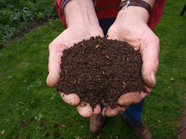 wonderful compost makes a fab mulch