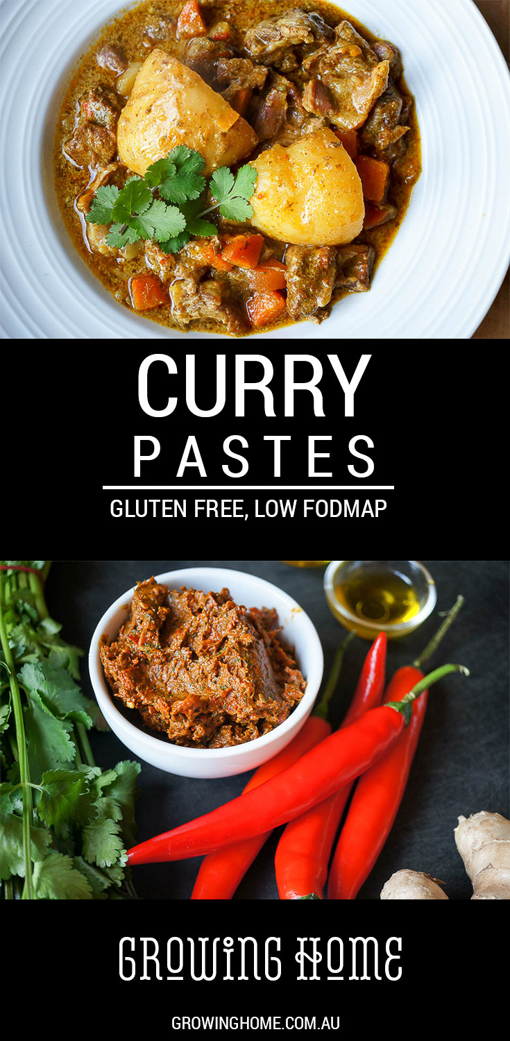 Curry Pastes - Gluten Free, Low FODMAP - Growing Home ...