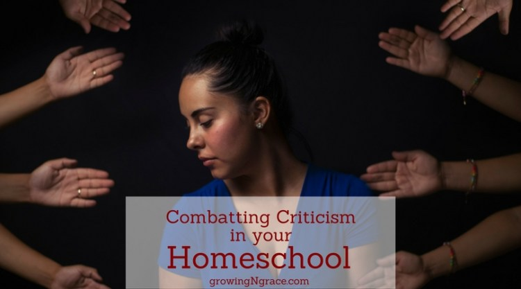 criticism of homeschool methods and homeschool curriculum | variety in homeschool | homeschool success