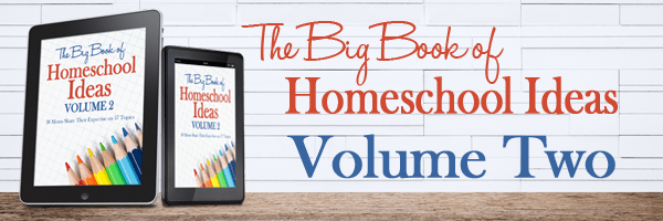 Big Book of Homeschool Ideas 2 review   homeschooling guide   answers to homeschooling questions