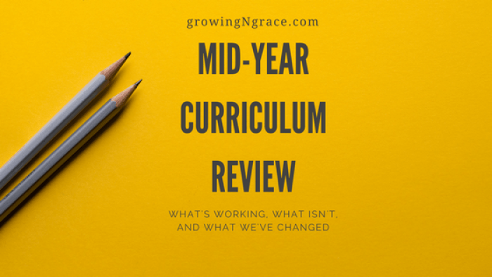 mid-year curriculum review | evaluating your homeschool year