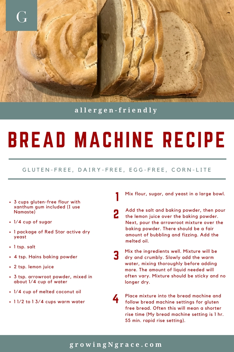 Allergy-Friendly Bread Machine Recipe
