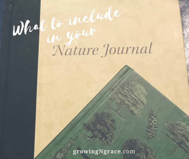 nature journal | how to get started and what to include | nature study