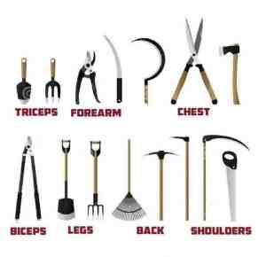 gardening workout