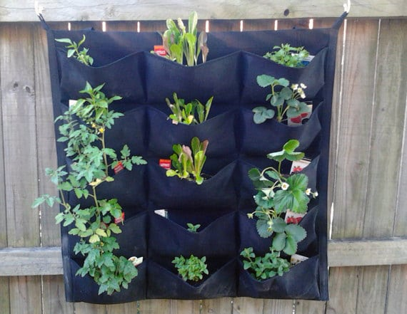 how to start a vertical garden