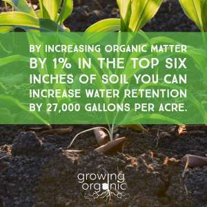 increase water retention in soil