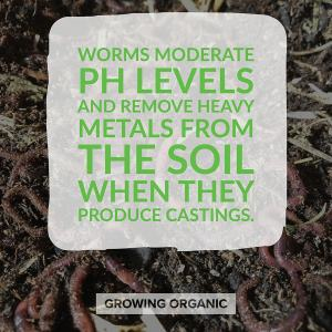 earthworms moderate ph levels for you