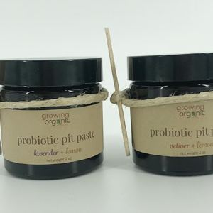 probiotic pit paste - all natural vegan deodorant