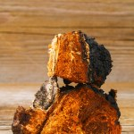 Health Benefits of Chaga Mushrooms