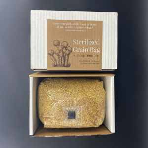 sterilized grain bag with injection port for growing mushrooms at home