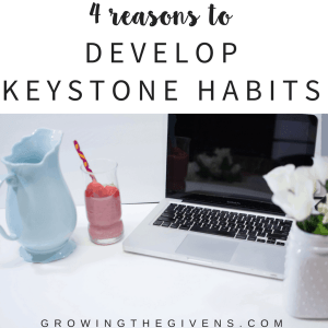 Why you need to develop Keystone Habits today