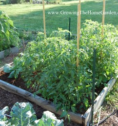 11 tips to consider when designing a raised bed vegetable garden layout [ 2232 x 1934 Pixel ]