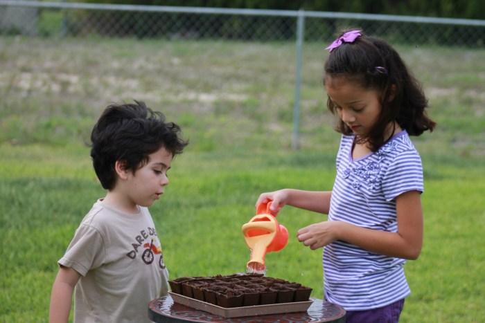 niños plantando semillas