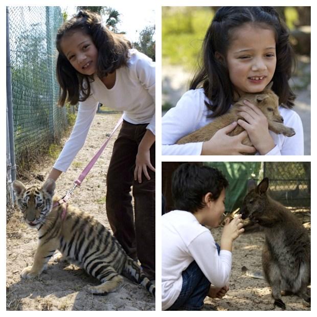 Petting the animals at Kowiachobee Animal Preserve