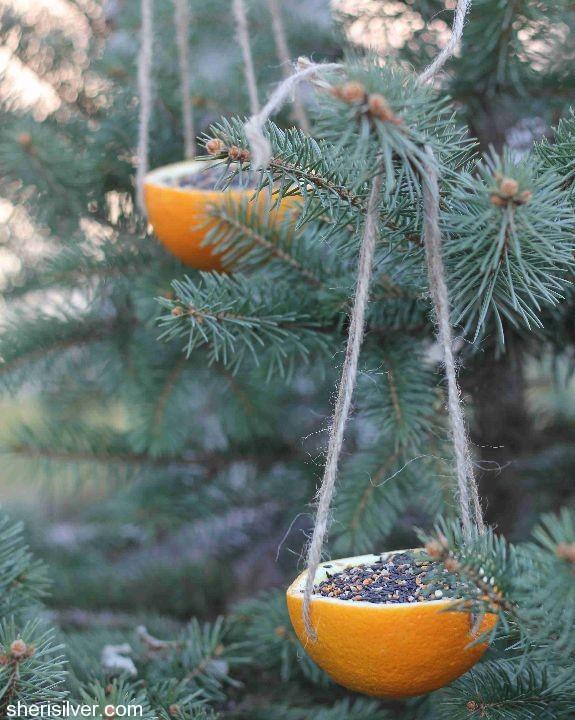 Orange bird feeder. Photo: Donuts, Dresses and Dirt