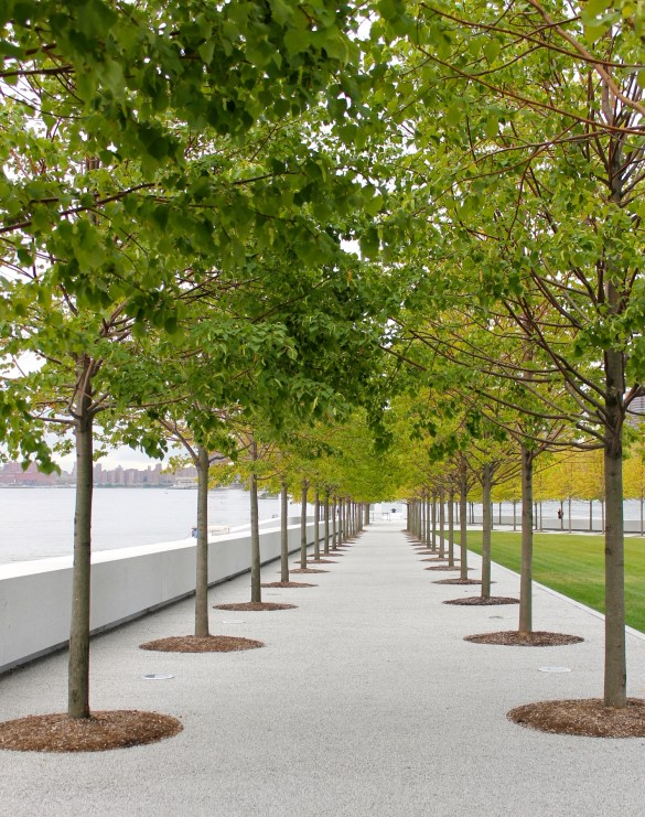 View throughout the rows of trees towards the south point of the island and the at Four Freedoms Park.