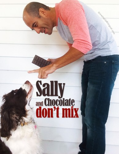 Sally and Chocolate don't mix!