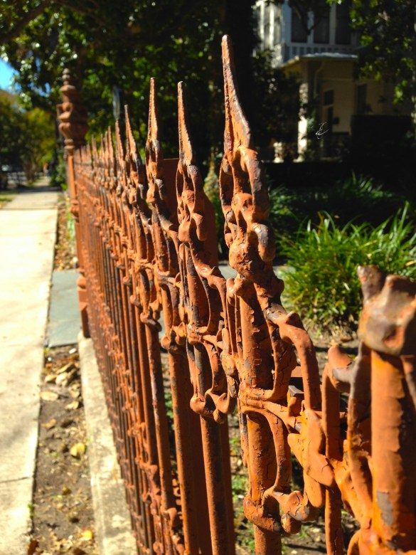 wrought iron fence in King William San Antonio