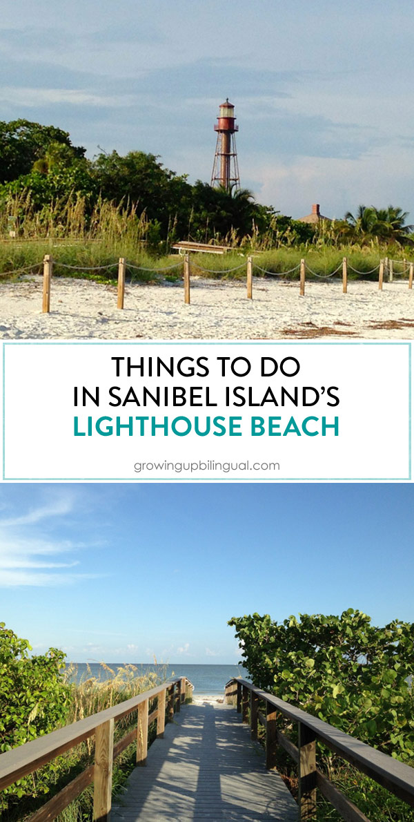 Things to do in Sanibel's Lighthouse Beach