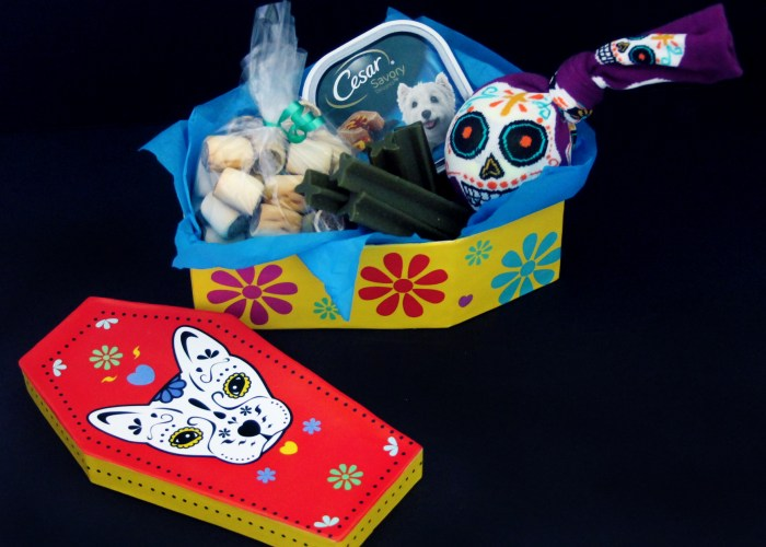 Day of The Dead 5 Minute DIY Dog Toy And BOOing Bundle