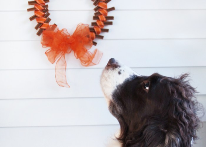 Fall Dog Treat Wreath Tutorial