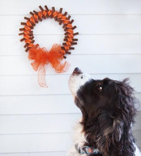 Fall Dog Treat Wreath Tutorial