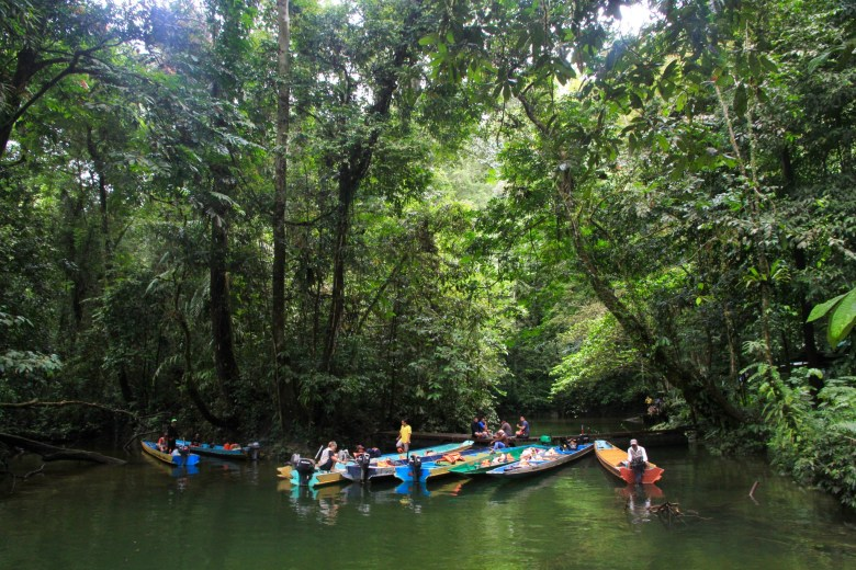 Malaysia forests
