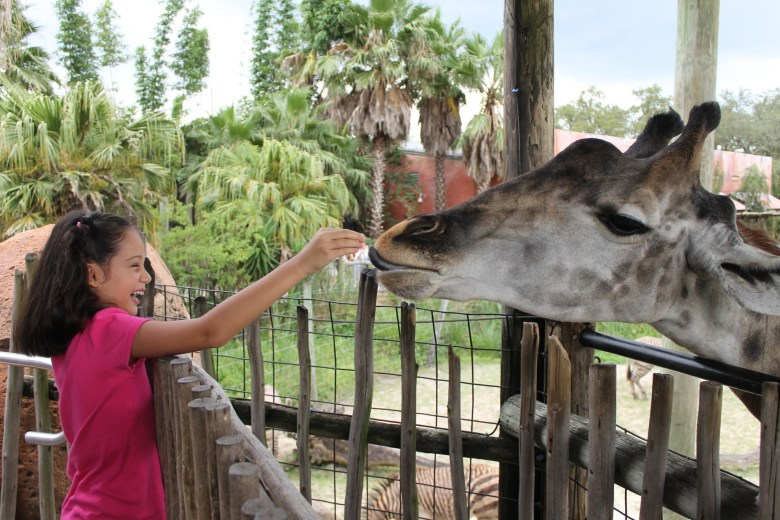 Lowry Park Zoo Tampa