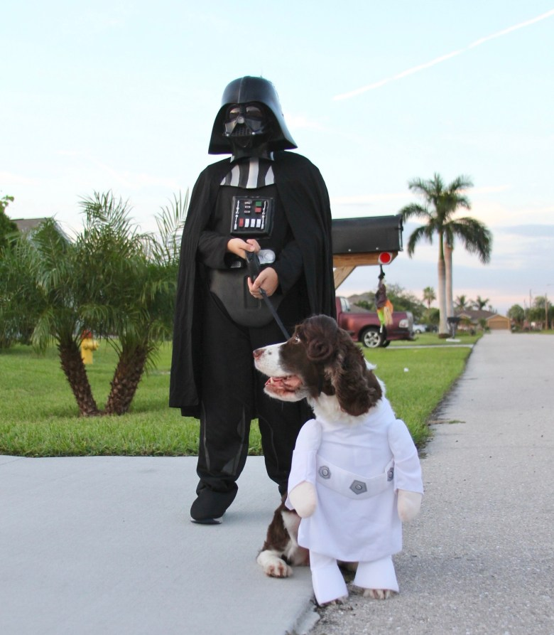 tips for trick-or-treating with kids