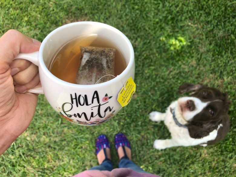 tea cup outdoors with dog