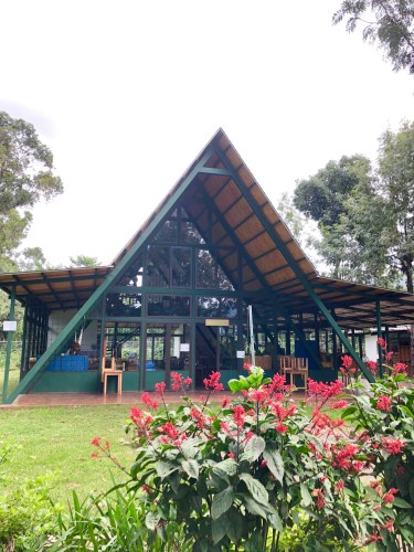 Summer Camp for Kids in Antigua Guatemala: Our Experience at Antigua Green School