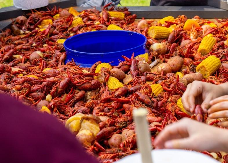 crawfish festival New Orleans