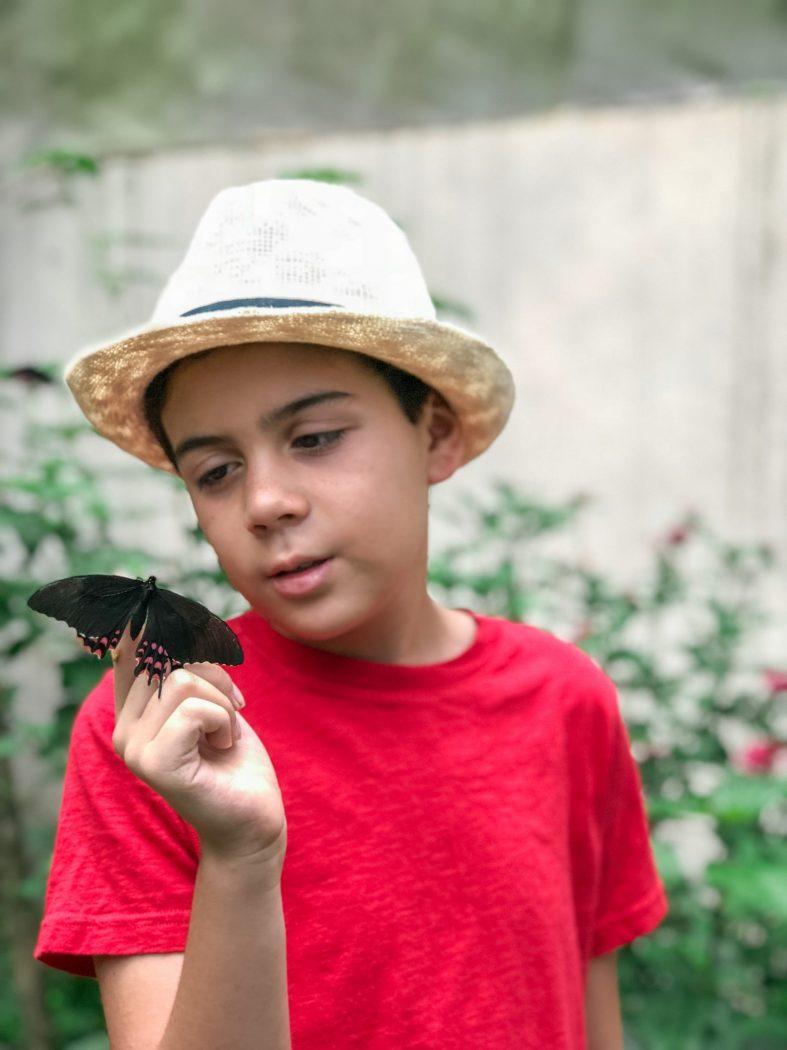 Butterfly garden at Reserva Natural de Atitlan