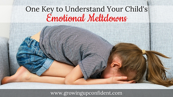 One Key to Understand Your Child's Emotional Meltdowns
