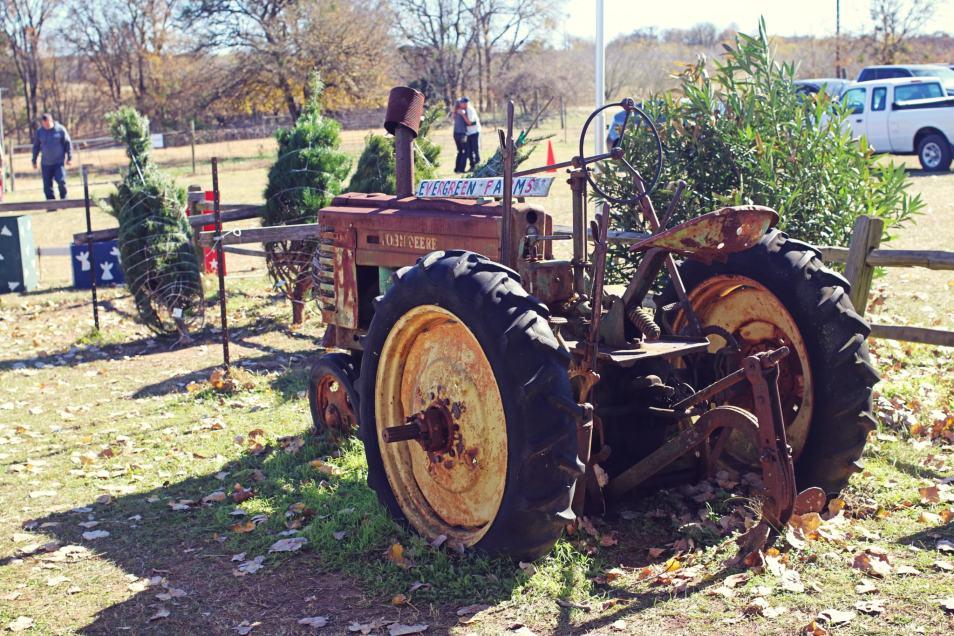 2018 Evergreen Tree Farm