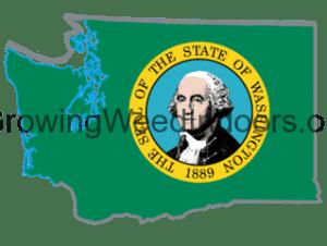Washington's first report about marijuna