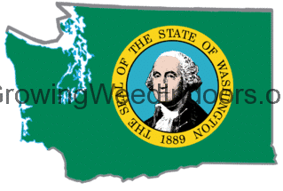 Washington's first report about marijuna