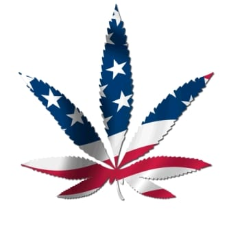 USA - hemp.growmart