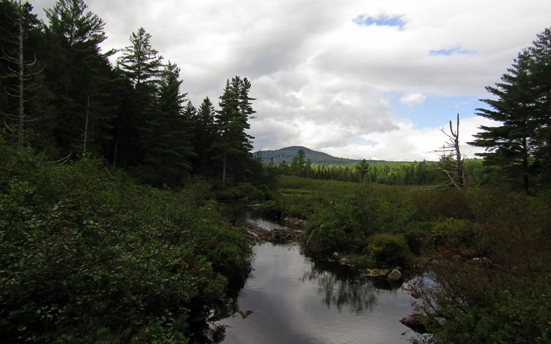 See what all the fuss is about – A visit to the Katahdin Region & the Katahdin Woods & Waters National Monument