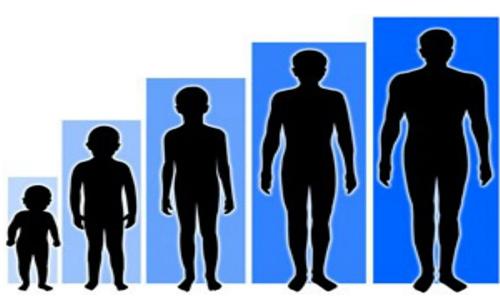how do we grow height