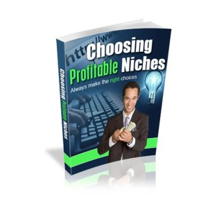 Choosing Profitable Niches