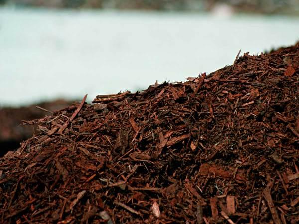 mulch powerful tool organic